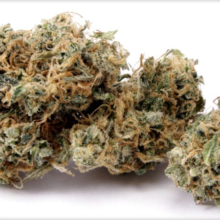 Buy Cannatonic Weed Online, Cannatonic for sale, Buy Cannatonic, Cannatonic for sale cheap, order Cannatonic online, Cannatonic for anxiety