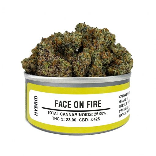 Buy Face on Fire